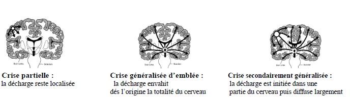 neuro1 (1)